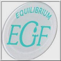 ekvilibrum